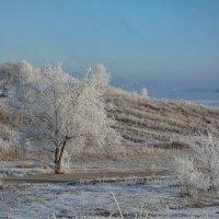 Зима :: Денис Козьяков