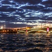 Мосты Петербурга :: Nika Polskaya