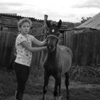 Девочка Алёна и жеребёнок :: Светлана Рябова-Шатунова