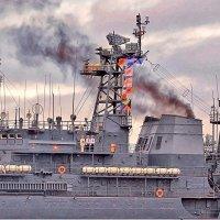 В День ВМФ в Балтийске :: Nina Karyuk