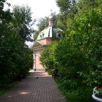 Часовня Александра Невского и Иоанна Воина (Суворовская часовня) :: Яша Баранов