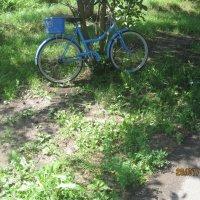 Велосипед :: Smit Maikl