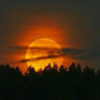 Закат Луны. :: Наталья