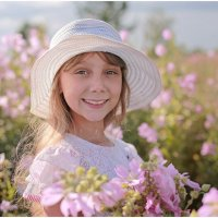 Розовое лето :: Римма Алеева