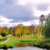 Осенью в парке :: Leonid Tabakov