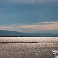 Река Амур на Дальнем Востоке :: Николай Гейкер