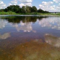 Река Битюг. Какое утро! Как чист и ясен небосвод... :: Ольга Кривых