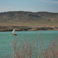 река Или Казахстан. :: Murat Bukaev
