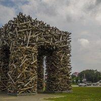 Не привез дров,в Перми не бывал :: Сергей Цветков