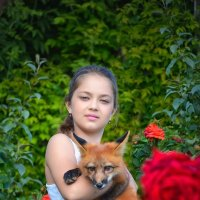 Две лисы.... :: Оксана Я