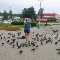 хотел поймать голубя :: Владимир