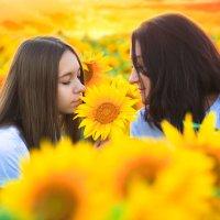 На закате :: Любовь Дашевская
