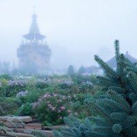 Туман :: Валерий Михмель