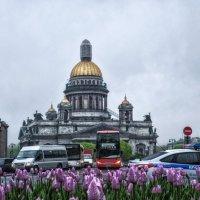 Исаакиевская площадь (2) :: Игорь Свет