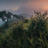 Сказки утреннего тумана :: Андрей Кровлин