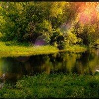 «Жара, жара, жареное солнце…»© :: Глeб ПЛATOB