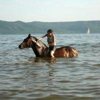 Купание коня . :: Andrey