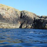 Скалистый остров :: Natalia Harries