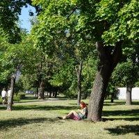 В парке :: елена