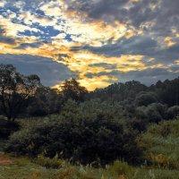 Рассветною границей дня и ночи... :: Лесо-Вед (Баранов)
