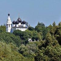 вид с моста :: tatiana rastorgyeva