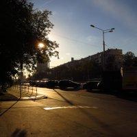 О пользе походов в аптеку :: Андрей Лукьянов