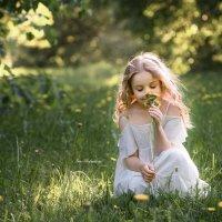 В поле с одуванчиками :: Ирина ...