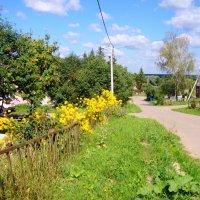 август в нашей деревушке... :: Галина Флора