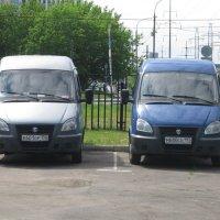 """Два """"Соболя"""" :: Дмитрий Никитин"""