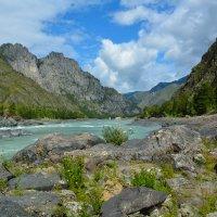 У горной реки. :: Валерий Медведев