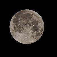 Луна :: Jakob Gardok