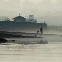 Утро в тумане :: Крылова Светлана