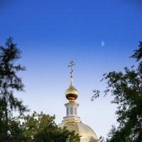 Никольский кафедральный собор в Камышине :: Игорь Денисов