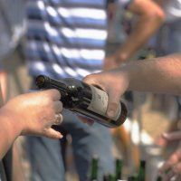 Не бывает винограда без вина :: Юрий Гайворонский