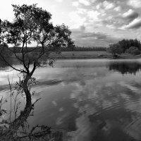 Вечер у озера :: Александр