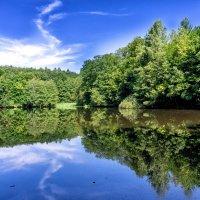 На озере.. :: igor G.