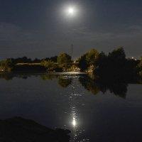 А ночь стоит лунявая.... :: Александр Тулупов