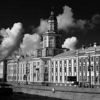 Кунсткамера под облаками :: Елена