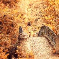 Побежали в осень :: Оксана Шаталина