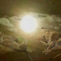 Сон зверей :: Светлана