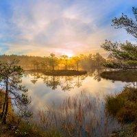 Лёгкость чистого утра :: Фёдор. Лашков