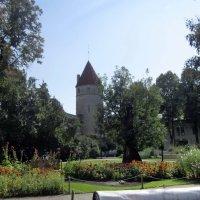 В парке на площади Башен у стен Старого города :: veera (veerra)