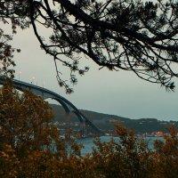 Мост :: Евгений Бутусов