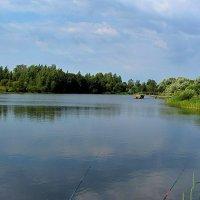 Озеро в деревне Зубревичи :: Виталий Андрейчук