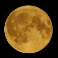 Луна :: Анастасия Рысь