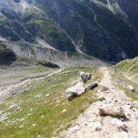 В горах моё сердце... :: Светлана Попова