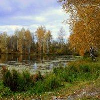 Погрустим в тишине уходящего лета... :: Нэля Лысенко
