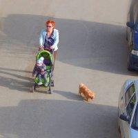 Семейство на прогулке! :) :: Елена (Elena Fly) Хайдукова