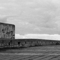 Чужое одиночество :: Максим Пасека