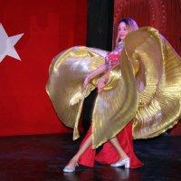 Танец 3 :: Владимир Гатажаков